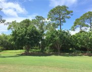 10328 SW Rookery Way, Palm City image