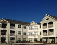 934 Governors Ct #307, Antioch image