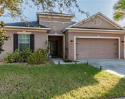 8717 Deep Maple Drive, Riverview image
