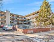 33 N Corona Street Unit 207, Denver image