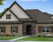 1108 Madison Mill Drive #38, Nolensville image
