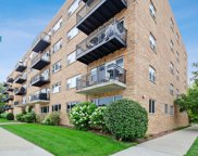 2525 West Bryn Mawr Avenue Unit 304, Chicago image