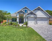 2903 W Ballast Point Boulevard, Tampa image