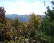 44 Mountain Lion Road, Purlear image