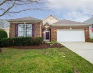 982 Platinum  Drive, Fort Mill image