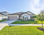 12223 Streambed Drive, Riverview image