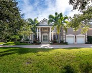 8697 Buttonwood Lane N, Pinellas Park image