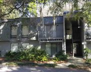 380 Salt Marsh Circle Unit 21F, Pawleys Island image