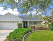 11109 Irish Moss Avenue, Riverview image