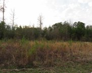 Tract 10 Mishoe Rd., Conway image