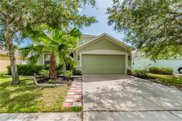 3537 Fortingale Drive, Wesley Chapel image