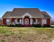 19155 Tammy Leigh Drive, Athens image