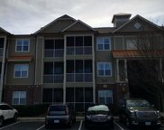 395 S Crow Creek Drive Nw Unit #1117, Calabash image