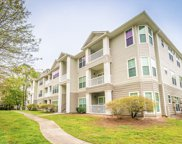 700 Daniel Ellis Drive Unit #12101, Charleston image