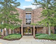 925 Spring Hill Drive Unit #205, Northbrook image