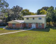 10521 Carrollview Drive, Tampa image