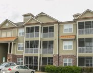 395 S Crow Creek Drive Unit #2301, Calabash image
