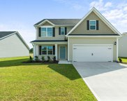 7117 Brittany Pointer Court, Wilmington image