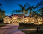 16334 Burniston Drive, Tampa image