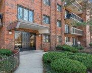 9201 Drake Avenue Unit #103, Evanston image