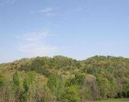 East Coast Tellico Parkway, Greenback image