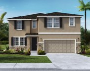 12509 Candleberry Circle, Tampa image