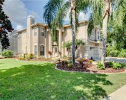 6012 Native Woods Drive, Tampa image