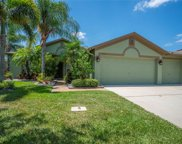 6521 Carrington Sky Drive, Apollo Beach image