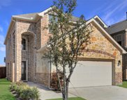 10420 Big Sandy Court, McKinney image