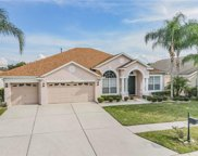 10323 Meadow Crossing Drive, Tampa image