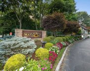 51 Maple Run Dr, Jericho image