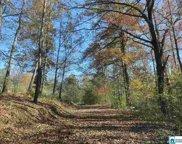 3234 Robert Lee Ln Unit 9&10, Trussville image