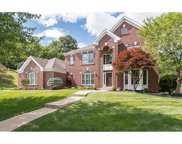 17914 White Robin, Chesterfield image