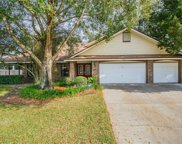 14803 Grimsby Place, Tampa image