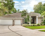 17702 Shannon Oaks Ct, Tampa image