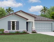 12224 Miracle Mile Drive, Riverview image