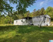 197 Roy Isbell Drive, Ashville image