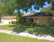2589 Skipper Trail, Clearwater image