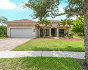 6705 Bulrush Court, Greenacres image