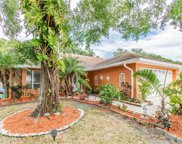7243 Hollowell Drive, Tampa image