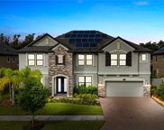 10307 Clover Pine Drive, Tampa image