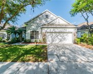 17814 Sandpine Trace Way, Tampa image