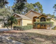 625 Somerstone Drive, Valrico image