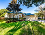 3828 Misty Landing Drive, Valrico image