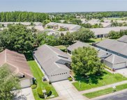 1319 Winding Willow Drive, Trinity image