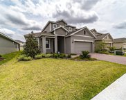 2944 Deerberry Lane, Clermont image