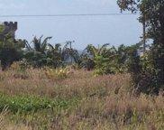 Mapuana, Big Island image