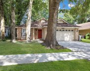 1169 Whispering Winds Court, Apopka image