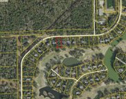 Lot 15 Wallace Pate Dr., Georgetown image