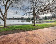 14864  Lago, Rancho Murieta image